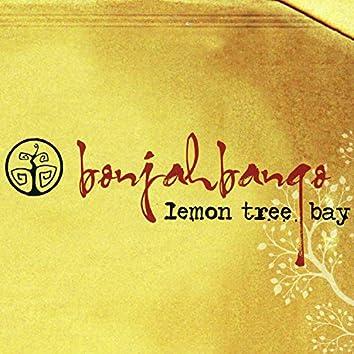 Lemon Tree Bay