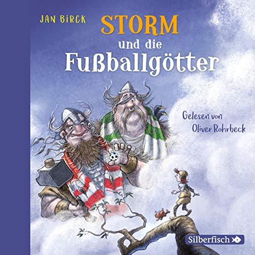 Storm und die Fußballgötter cover art