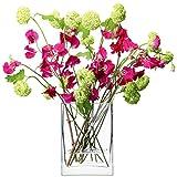 LSA FW11 Flower Rectangular Bunch Vase H22cm Clear, G857-22-301 Image