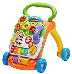 Best Baby Push Walker Reviews For 2020 | Buying Guide 29