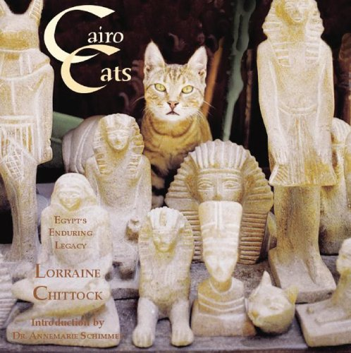 Cairo Cats: Egypt's Enduring Legacy