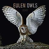 Eulen 2020 - Owls - Wandkalender - Broschürenkalender (30 x 60 geöffnet) - Tierkalender - Wandplaner