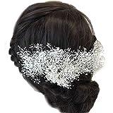 花職人の店 いるでぱいん 髪飾り プリザーブドフラワー かすみ草 白 10本 クリアケース付き