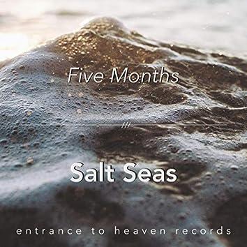 Salt Seas