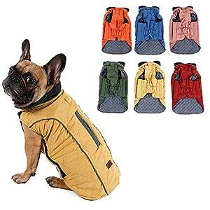Outgoings Veste d'hiver pour chien Vêtements chauds pour petits/moyens/grands chiens