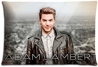 16x24 inch 40x60 cm cushion pillow cover cases Polyester * Cotton Luxurious Comfort Adam Lambert