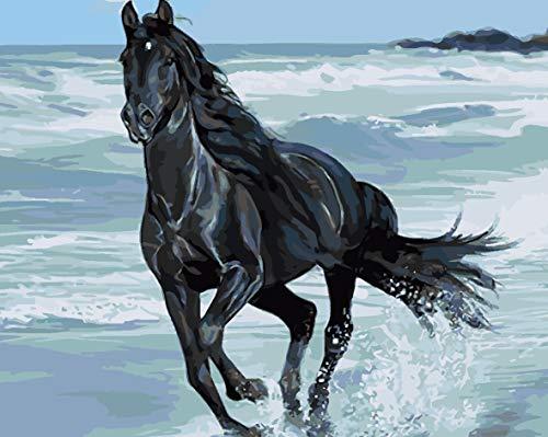 SFFLILY Schilderen op nummer-voorbedrukte canvas-olieverfschilderij cadeau voor volwassenen kinderen kits huis decoratie - zwart paard aan zee 50x65cm