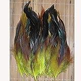 QORI 13 Tipos de Pluma de faisán de selección de Color 50 Lote 12,5 20 cm