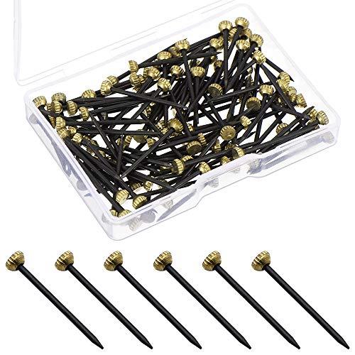 LumenTY 100 Stück Bildernagel mit Messingkopf Stahlbildernägel 25 mm Betonnägel für Bilder mit Kunststoff Aufbewahrungsbox für Bastelprojekte DIY-Dekoration
