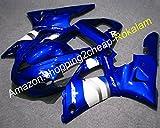 Kit de posventa YZF1000 carenado para Yamaha YZF 1000 R1 2000 2001 YZF-R1 Azul Blanco ABS Carenados completos (moldeo por inyección)