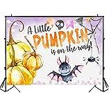Telón de fondo para baby shower Little Pumpkin Baby Shower Photo Background Spider Bat Baby Shower Party Fotografía telón de fondo 7 × 5ft