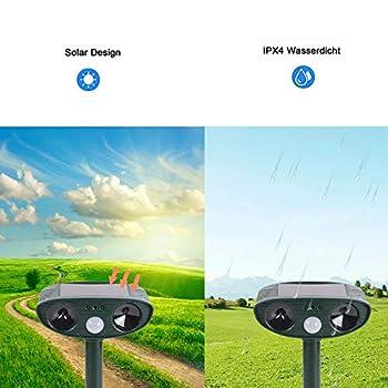 PECHTY Répulsif pour chat à énergie solaire, imperméable à ultrasons pour animaux de plein air pour chats, chiens, écureuils et autres rongeurs (16 x 15 x 8 cm)