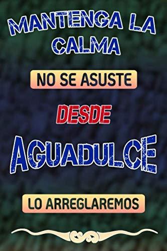 Pas de panique, nous allons le réparer depuis Aguadulce lo arreglaremos: Cuaderno | Diario | Diario | Página alineada