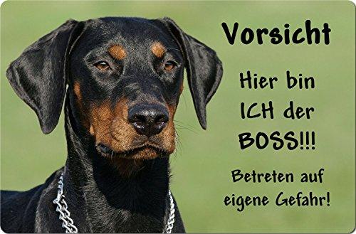 +++ DOBERMANN - Metall WARNSCHILD Schild Hundeschild Sign - DBM 22 T7