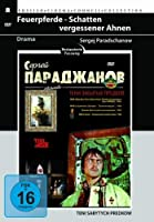 Feuerpferde-Schatten Vergessener Ahnen [DVD] [Import]