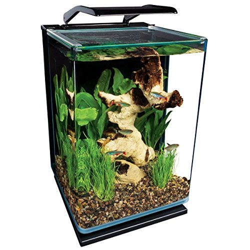 Marineland Portrait Glass LED aquarium Kit, 5 Gallons, Hidden...