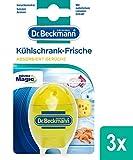 Dr. Beckmann Kühlschrank Frische Limone | Absorbiert Gerüche, schützt Aromen | mit natürlichem Limonenextrakt & Bio Alkohol | 3er Pack(3 x 40 g)