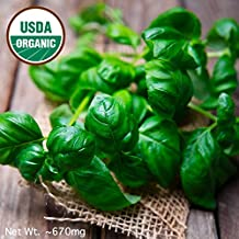 Gaea's Blessing Seeds - Organic Sweet Basil Seeds 500+ Seeds Non-GMO Large Leaf Italian Heirloom Genovese Pesto Open-Polli...