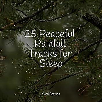 25 Peaceful Rainfall Tracks for Sleep