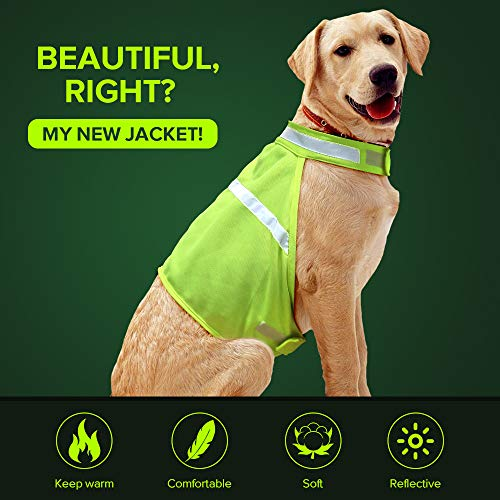 Dog Jacket High Visibility Safety Reflective Dog Vest for Small Medium Large Dogs (Large, Green)