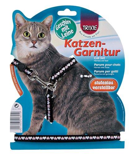 Pettorina per gatti e guinzaglio con motivo a cuore.