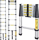 Nassboards, Telescoping Ladder - Lightweight Aluminium Metal - Telescopic, Compact, Multi Purpose, Adjustable Steps, Extendable and Collapsible - Great for Cleaning Gutters, Decorating, Painting Walls