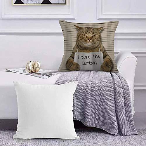Funda de Cojín Funda de Almohada del Hogar Cortina Divertida del Gato Tore Animales creativos,Sofá Throw Cojín Almohada Caso de la Cubierta para Sala de Estar 45x45cm