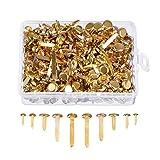 WILLBOND 500 Pieces Brass Plated Paper Fasteners Round Metal Brads with Storage Box Assorted Size Brads (Gold)