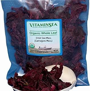 VITAMINSEA Organic Real Irish Moss - 4 oz / 112 G Whole Leaf Chrondus Crispus Maine Coast Raw Seaweed - Vegan - Kosher - For Keto - Paleo - Dr. Sebi Diets - Atlantic Ocean Sea Vegetables (IMWL4)