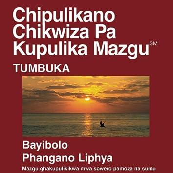 Chitumbuka New Testament (Dramatized)