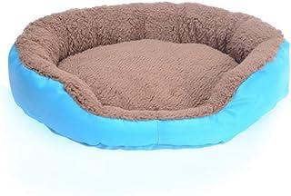 jiwenhua Mascotas, Dulce Teddy, Mascotas, Gatitos, Perros Peludos, Igual Azul, XXL: 95 & Times, 75cm