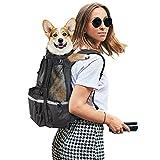 Dog Backpacks - Best Reviews Guide