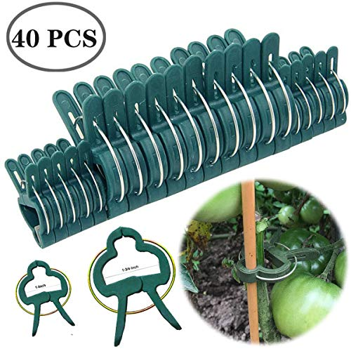 Preimum Reusable Garden Plant Support Clips Vines Flower Clamps Rings for Greenhouse Gardening Supporting Stems,Vines,Stalks Flower Beds Grow Upright Climbing Plants Conical Trellis Supporter Frame