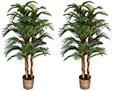 Vintage Home Sunny Isles A Set of Two 60' Artificial Palm Tree's, Green