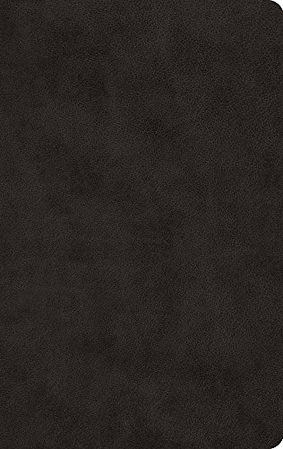 ESV Large Print Value Thinline Bible (TruTone, Black)