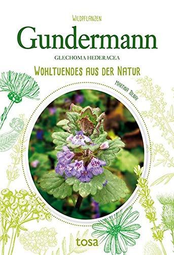 Gundermann: Wohltuendes aus der Natur