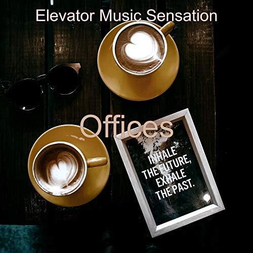 Elevator Music Sensation