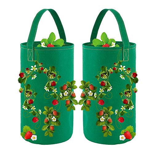 2 Pack Strawberry Planting Grow Bags Hanging Strawberry Planter Grow Bags Planting Containers Pots with Growing Holes for Garden Strawberries, Herbs, Flowers (Green)