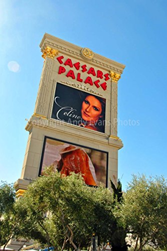 Celine Dion Foto ein 30,5 x 45,7 cm Hochwertiger Fotodruck der Celine Dion Neon Show Poster Caesars Palace Hotel Las Vegas Nevada USA Amerika Hochformat Foto Farbe Bild Fine Art Print