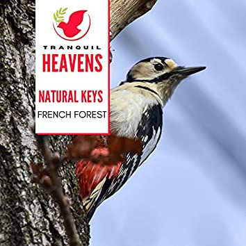 Natural Keys - French Forest