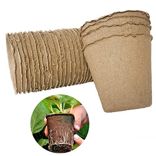 Dyda6 Lot de 100 pots de semis biodégradables ronds de 8 cm en papier pour pépinière, écologique, biodégradable, marron, Taille unique