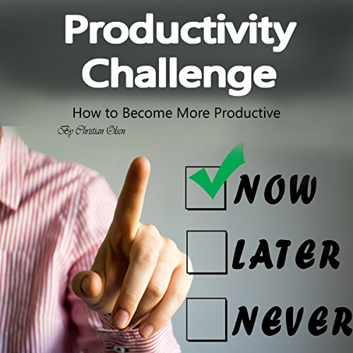 Productivity Challenge: How to Become More Productive audiobook cover art