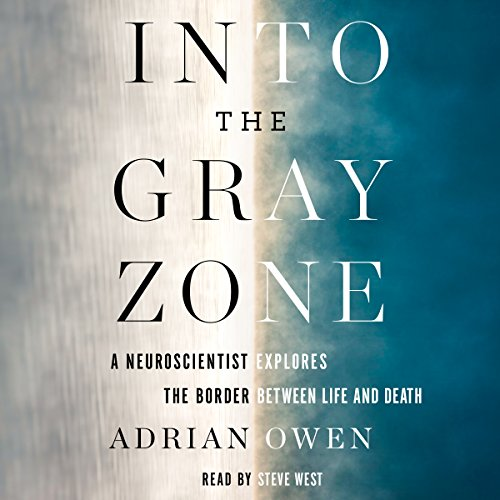 Into the Gray Zone audiobook cover art