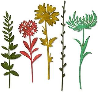 Best tim holtz wildflower dies Reviews