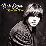 Songtexte von Bob Seger - I Knew You When