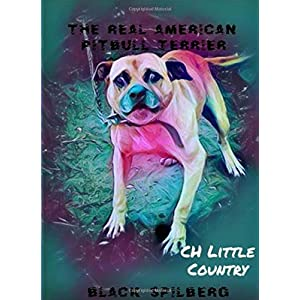 THE REAL AMERICAN PITBULL TERRIER 11