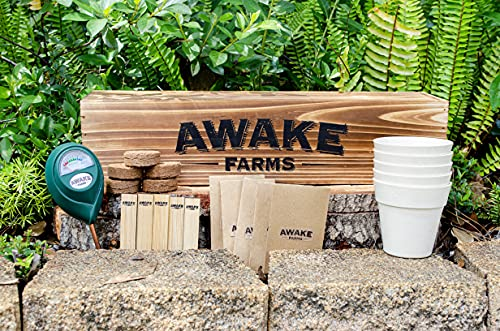 Bonsai Starter Kit – Awake Farms – Everything You Need to Grow 5 Bonsai Trees from Seed – Grow Red, Purple, and Pine Bonsai Trees – Bonsai Trees Garden Starter Kit – Wooden Planter