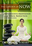 Meditation for infertility