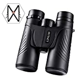 HUTACT Binoculars for Adults, Compact 10x42 Professional Binoculars with Harness Strap and Carrying