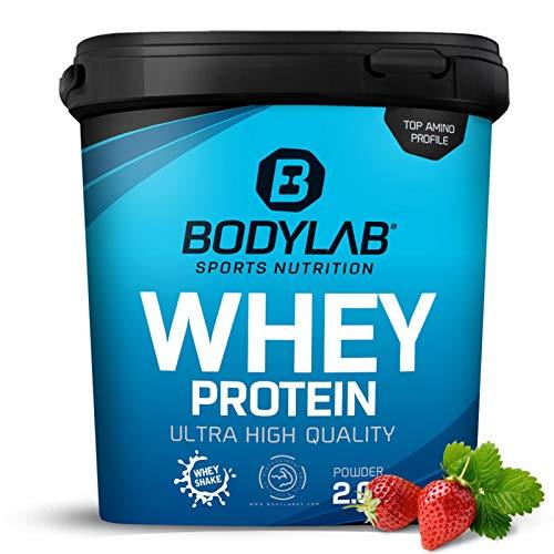 Protein-Pulver Bodylab24 Whey Protein Erdbeere 2kg / Protein-Shake für Kraftsport & Fitness / Whey-Pulver kann den Muskelaufbau unterstützen / Hochwertiges Eiweiss-Pulver mit 80{5b097bf4842190ac85d66458a9c638a74c258f607f8cf15a516eff29c51da36f} Eiweiß / Aspartamfrei